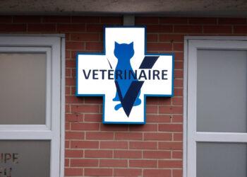 pose d'enseigne vétérinaire tours 37